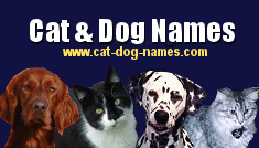 Maltese names picture